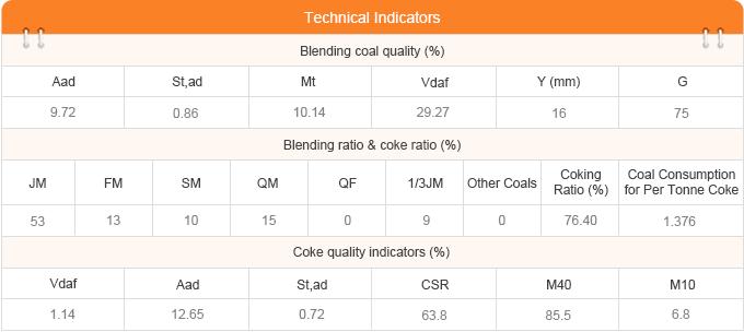China Coking Plant Database